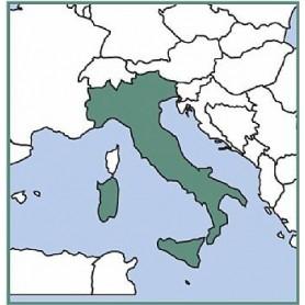 RINNOVO VFR MANUAL Italia-Malta (ex Bottlang)