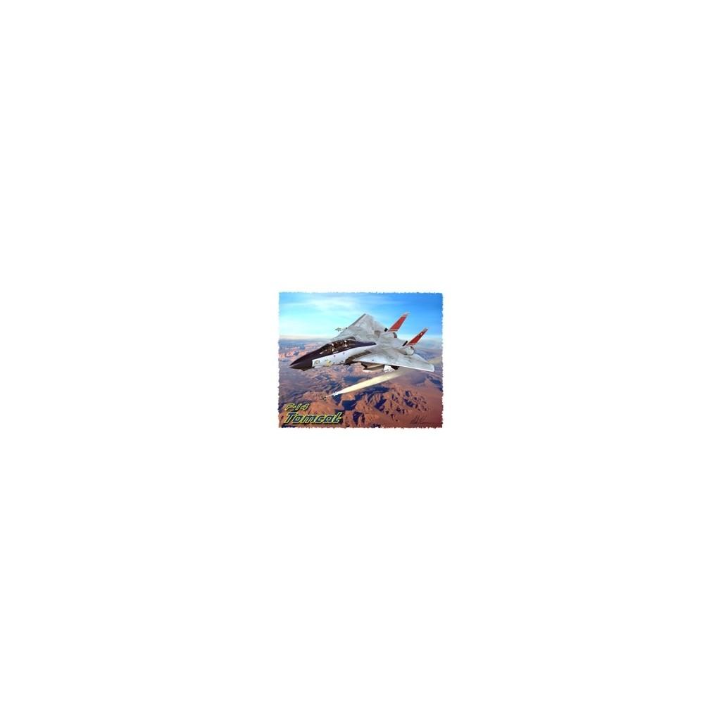 T-shirt uomo F-14 Tomcat